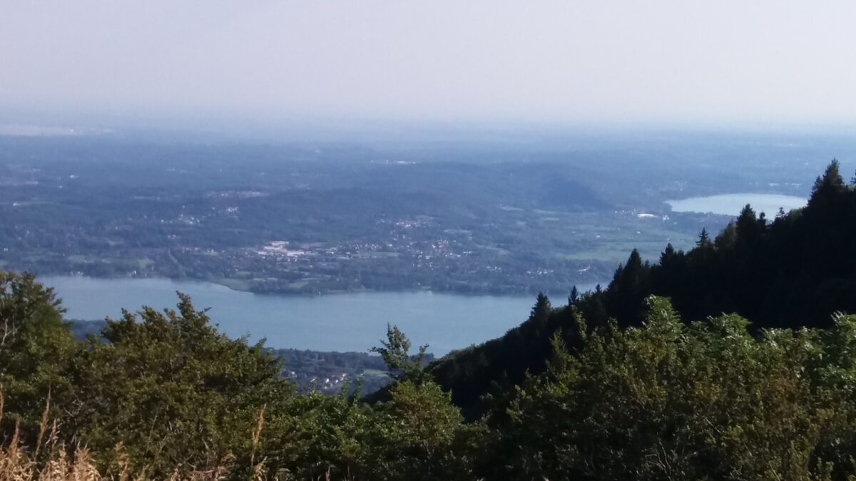 Save Lake Varese – a Cooperation with the Rachel Carson Center